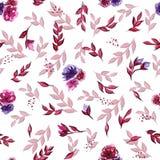 Άνευ ραφής κόκκινη ρόδινη πορφύρα λουλουδιών watercolor σχεδίων ανοιχτή στοκ φωτογραφίες με δικαίωμα ελεύθερης χρήσης