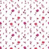 Άνευ ραφής κόκκινη ρόδινη πορφύρα λουλουδιών watercolor σχεδίων ανοιχτή στοκ φωτογραφία με δικαίωμα ελεύθερης χρήσης