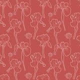 Άνευ ραφής κόκκινο εκλεκτής ποιότητας floral σχέδιο με τις ίριδες διανυσματική απεικόνιση