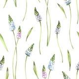 Άνευ ραφής λεπτές λουλούδια και εγκαταστάσεις σχεδίων Απεικόνιση watercolor καλοκαιριού και άνοιξης Βοτανική σύσταση κομψός Στοκ φωτογραφία με δικαίωμα ελεύθερης χρήσης