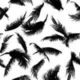 Άνευ ραφής μαύρο σχέδιο φύλλων δέντρων καρύδων για το κλωστοϋφαντουργικό προϊόν μόδας Στοκ Εικόνες