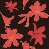 Άνευ ραφής μαύρο floral σχέδιο με τον κόκκινο κρίνο Στοκ Φωτογραφίες