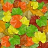 Άνευ ραφής με τα πολύχρωμα φύλλα φθινοπώρου απεικόνιση αποθεμάτων