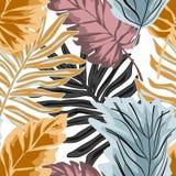 Άνευ ραφής μοντέρνο τροπικό σχέδιο Φοίνικας, τροπικά φύλλα στο άσπρο υπόβαθρο r ελεύθερη απεικόνιση δικαιώματος