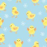 Άνευ ραφής μπλε σχέδιο με τα χαριτωμένα μικρά κοτόπουλα απεικόνιση αποθεμάτων