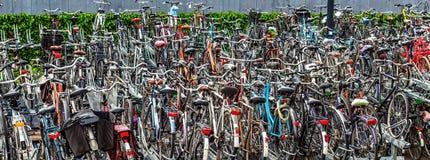 Άνευ ραφής πανοραμικό συσσωρευμένο πάρκο ποδηλάτων Στοκ Εικόνα