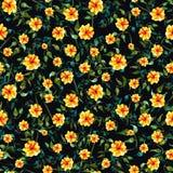 Άνευ ραφής πράσινο χρώμα διακοσμήσεων watercolor foliate και κίτρινο λουλούδι Στοκ Φωτογραφίες