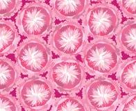 Άνευ ραφής πρότυπο με τα ευγενή λουλούδια Στοκ φωτογραφίες με δικαίωμα ελεύθερης χρήσης