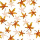 Άνευ ραφής πρότυπο με τα μειωμένα φύλλα Στοκ Φωτογραφία