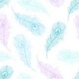 Άνευ ραφής πρότυπο με τα φτερά peacock ελεύθερη απεικόνιση δικαιώματος