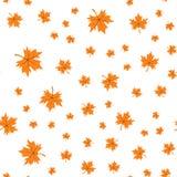 Άνευ ραφής πρότυπο των φύλλων φθινοπώρου Διανυσματική απεικόνιση των φύλλων σφενδάμου Στοκ Φωτογραφία