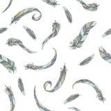 Άνευ ραφής πρότυπο φτερών Στοκ Φωτογραφίες
