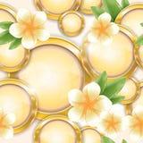 Άνευ ραφής πρότυπο - χρυσά πλαίσια και frangipani διανυσματική απεικόνιση
