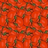 Άνευ ραφής συρμένη χέρι ντομάτα σχεδίων Στοκ φωτογραφία με δικαίωμα ελεύθερης χρήσης