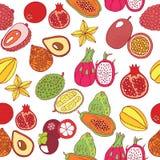 Άνευ ραφής συρμένο χέρι σχέδιο με τα τροπικά εξωτικά φρούτα διάνυσμα Στοκ Φωτογραφίες
