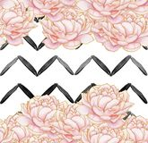 Άνευ ραφής σχέδιο - γεωμετρικά μαύρα λωρίδες με τα ρόδινα peonies στο άσπρο υπόβαθρο απεικόνιση αποθεμάτων