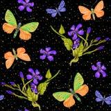 Άνευ ραφής σχέδιο θερινού watercolor με τις πεταλούδες, εξωτικά λουλούδια απεικόνιση αποθεμάτων