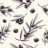 Άνευ ραφής σχέδιο κλαδί ελιάς Μεσογειακή διακλαδιμένος σύσταση ελιών Βοτανική ιταλική διανυσματική επανάληψη τροφίμων απεικόνιση αποθεμάτων