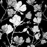 Άνευ ραφής σχέδιο κρητιδογραφιών σχεδίων χεριών λουλουδιών Magnolia ή sacura απεικόνιση αποθεμάτων