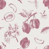 Άνευ ραφής σχέδιο με συρμένα τα χέρι λουλούδια και τα φρούτα δαμάσκηνων διανυσματική απεικόνιση
