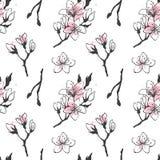 Άνευ ραφής σχέδιο με συρμένα τα χέρι λουλούδια sakura διανυσματική απεικόνιση