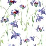 Άνευ ραφής σχέδιο με τα άγρια λουλούδια, απεικόνιση watercolor Στοκ Φωτογραφία