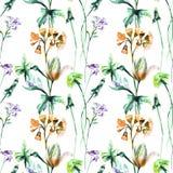 Άνευ ραφής σχέδιο με τα αρχικά θερινά λουλούδια Στοκ Φωτογραφία