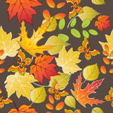 Άνευ ραφής σχέδιο με τα ζωηρόχρωμες φύλλα και τις πεταλούδες φθινοπώρου επίσης corel σύρετε το διάνυσμα απεικόνισης Στοκ εικόνες με δικαίωμα ελεύθερης χρήσης