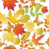 Άνευ ραφής σχέδιο με τα ζωηρόχρωμες φύλλα και τις πεταλούδες φθινοπώρου VE Στοκ Εικόνες