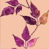 Άνευ ραφής σχέδιο με τα ιώδη και πορτοκαλιά φύλλα watercolor διανυσματική απεικόνιση