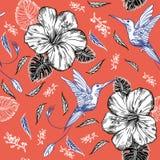 Άνευ ραφής σχέδιο με τα κολίβρια και τα τροπικά λουλούδια διανυσματική απεικόνιση