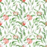Άνευ ραφής σχέδιο με τα κόκκινα λουλούδια και τα φύλλα watercolor Άνθος Peonies Στοκ εικόνες με δικαίωμα ελεύθερης χρήσης