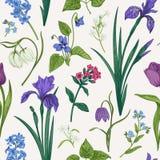 Άνευ ραφής σχέδιο με τα λουλούδια και τα χορτάρια στοκ φωτογραφία με δικαίωμα ελεύθερης χρήσης