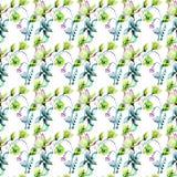 Άνευ ραφής σχέδιο με τα λουλούδια παπαρουνών και Magnolia Στοκ εικόνα με δικαίωμα ελεύθερης χρήσης