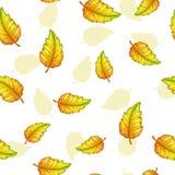 Άνευ ραφής σχέδιο με τα μειωμένα κίτρινα φύλλα Στοκ φωτογραφία με δικαίωμα ελεύθερης χρήσης