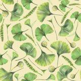 Άνευ ραφής σχέδιο με τα πράσινα φύλλα του biloba ginkgo στοκ εικόνες με δικαίωμα ελεύθερης χρήσης