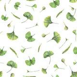 Άνευ ραφής σχέδιο με τα πράσινα φύλλα του biloba ginkgo στοκ εικόνα με δικαίωμα ελεύθερης χρήσης