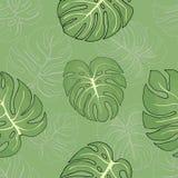 Άνευ ραφής σχέδιο με τα τροπικά φύλλα monstera επάνω στο πράσινο υπόβαθρο απεικόνιση αποθεμάτων