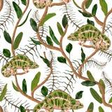 Άνευ ραφής σχέδιο με τα τροπικούς φύλλα και το χαμαιλέοντα Εξωτικό βοτανικό υπόβαθρο Στοκ εικόνες με δικαίωμα ελεύθερης χρήσης