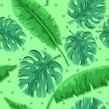 Άνευ ραφής σχέδιο με τα φύλλα monstera και μπανανών απεικόνιση αποθεμάτων