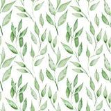 Άνευ ραφής σχέδιο με τα φύλλα watercolor grenn όπως η ανασκόπηση είναι μπορεί καλοκαίρι απεικόνισης χρησιμοποιούμενο Στοκ φωτογραφίες με δικαίωμα ελεύθερης χρήσης