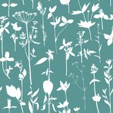 Άνευ ραφής σχέδιο με τα χορτάρια και τα λουλούδια σχεδίων Στοκ Εικόνα