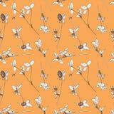 Άνευ ραφής σχέδιο με τα χορτάρια και τα λουλούδια σχεδίων Στοκ Φωτογραφία