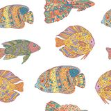Άνευ ραφής σχέδιο με τα ψάρια τέχνης zen doodle στο άσπρο υπόβαθρο Στοκ Εικόνες