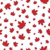 Άνευ ραφής σχέδιο με τα shabby κόκκινα φύλλα σφενδάμου με λίγο μίσχο Στοκ φωτογραφίες με δικαίωμα ελεύθερης χρήσης