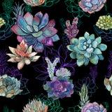 Άνευ ραφής σχέδιο με τα succulents στο μαύρο υπόβαθρο graphics watercolor διανυσματική απεικόνιση