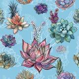 Άνευ ραφής σχέδιο με τα succulents στο μπλε υπόβαθρο graphics watercolor απεικόνιση αποθεμάτων