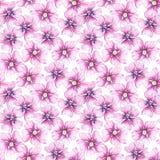 Άνευ ραφής σχέδιο με τα wildflowers διανυσματική απεικόνιση