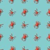 Άνευ ραφής σχέδιο με τις αράχνες Στοκ Εικόνες
