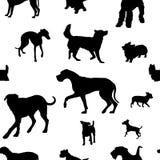 Άνευ ραφής σχέδιο με τις σκιαγραφίες σκυλιών Στοκ Εικόνες